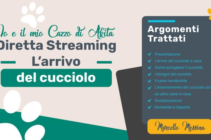 Accogliere il Cucciolo in casa, di Marcello Messina